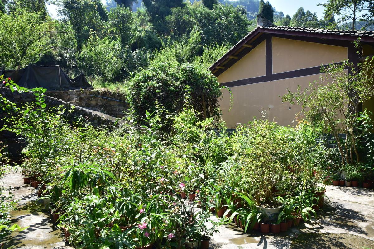 """邻水这个贫困户把院子变成了花园 还从东北""""摇""""回一个媳妇儿"""