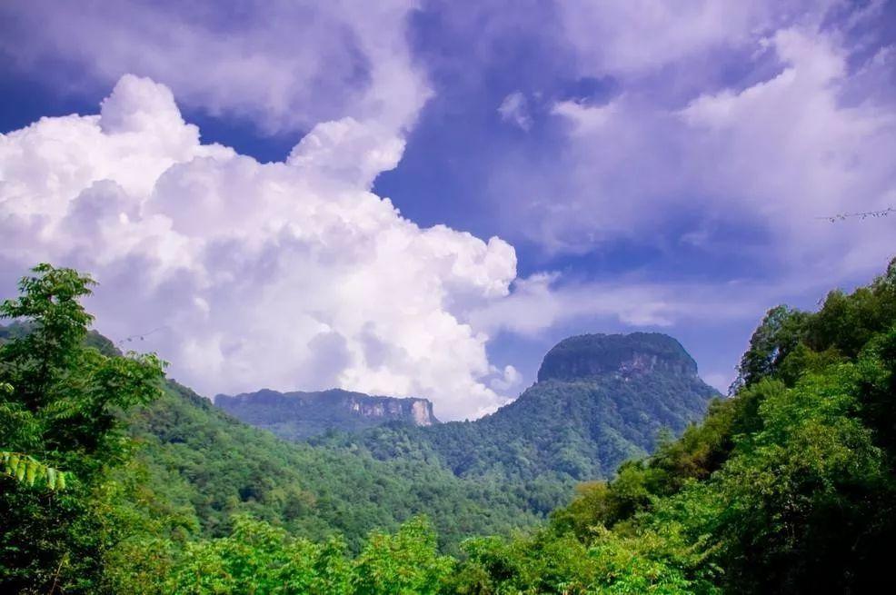 四川有哪些4a级旅游景点广元皇泽寺,广元七里峡古城山,广元翠云廊