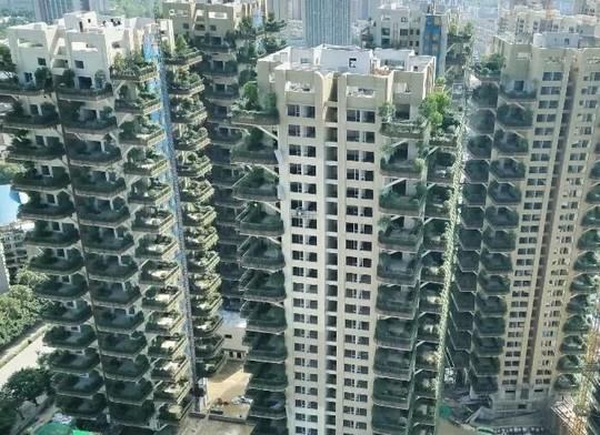 """30层楼家家有花园!成都首个""""垂直森林""""试点项目亮相"""